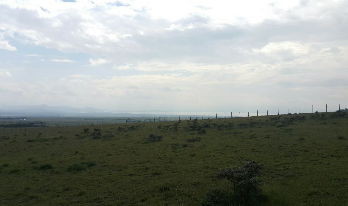 Prime Naivasha Plots for Sale
