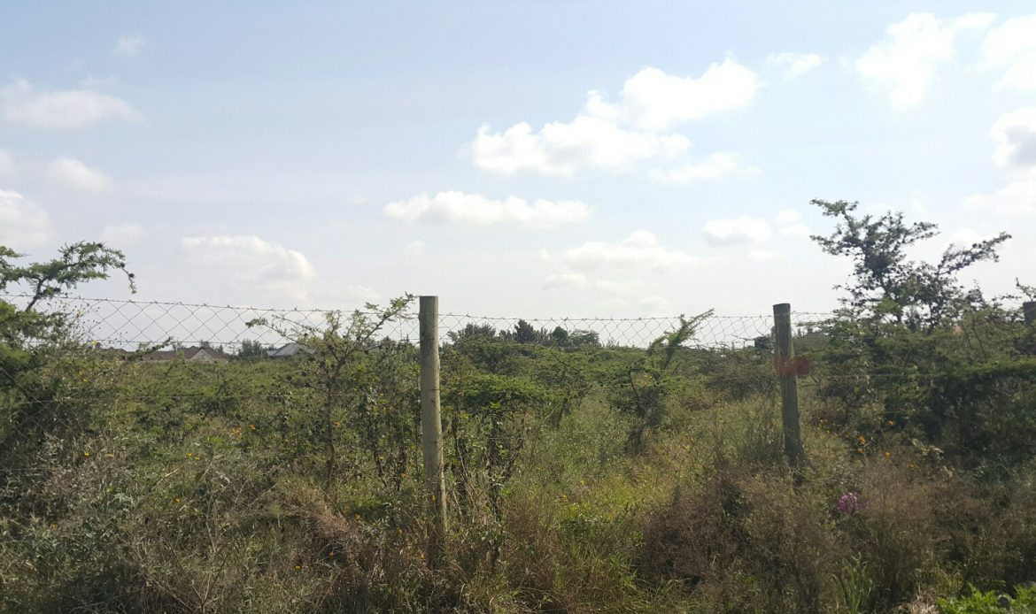 1/4 Acre Plots – Syokimau – Kiungani Road